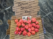 7 Pot Brain Strain Red Fresh Peppers - 1 SFRB